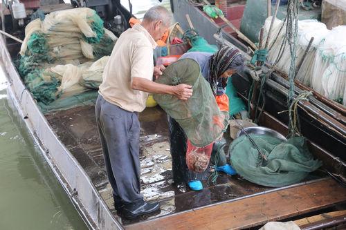 鱼篓子编织步骤图解