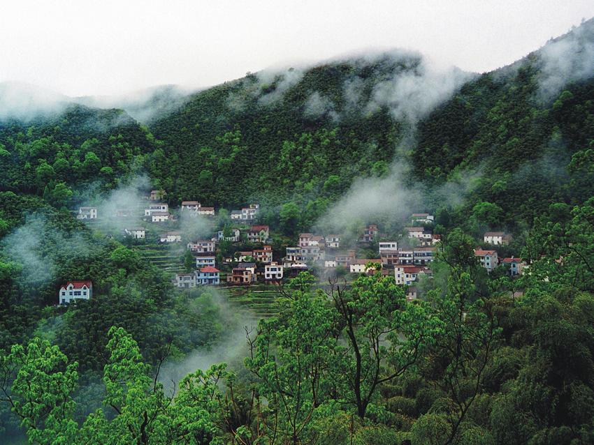 浙江安吉:打造中国美丽乡村标准化示范县图片