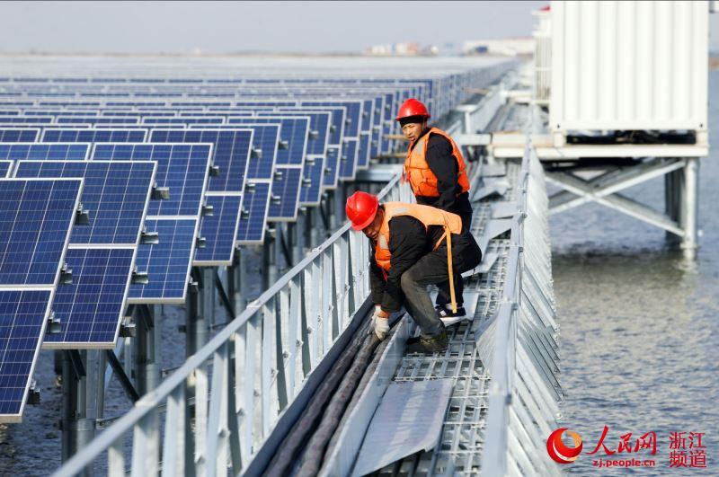 宁波最大渔光互补光伏电站将并网发电