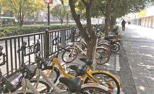 """杭州:共享单车""""电子围栏""""启用"""
