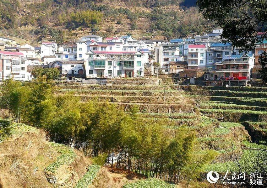 人民网:新闻中心助力偏远山村走向致富路