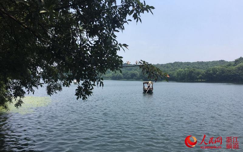 美丽的西湖,吸引着不少游人前来观光。图为乘客乘坐手划船在水面荡漾。