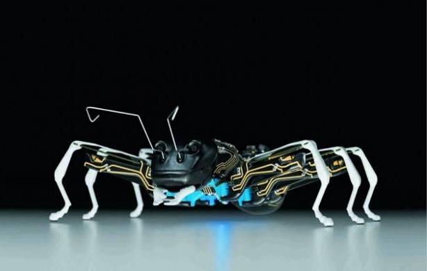 首只无线飞行机器昆虫问世