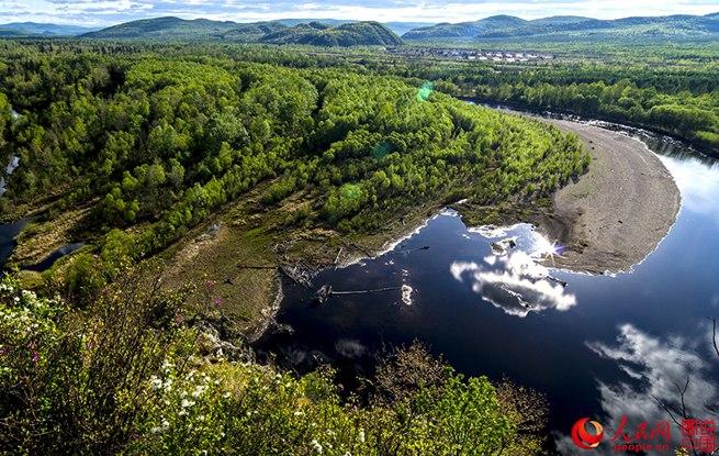 探寻大乌苏古树景区美景之旅