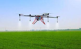 宁波:大平台引领现代农业新发展