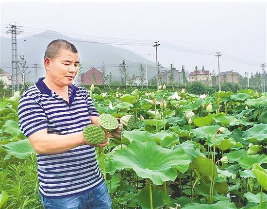 绍兴诸暨鱼蚌养殖转型增收