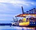 嘉兴:桐乡外贸转型再发力    在强劲的进出口增幅背后,是桐乡外贸主体实力的增强。1至5月,全市775家企业有自营进出口实绩……【详细】