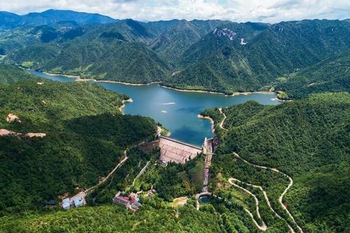 """加速""""两山""""转化 丽水800亩山地的水土空气""""卖""""了279万元"""