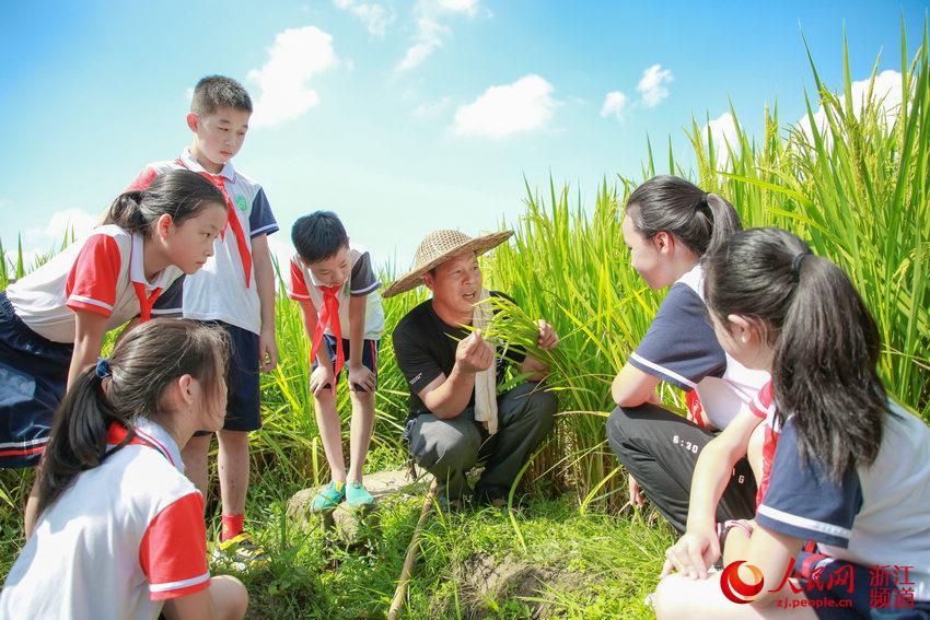 開學第一課:愛惜糧食 感恩勞動