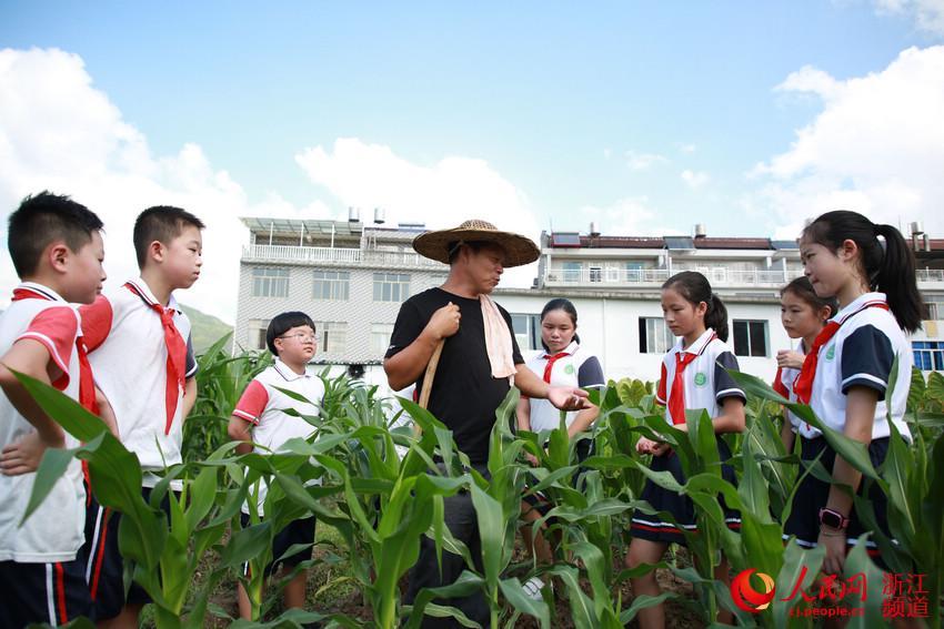 開學第一課:愛惜糧食 感恩勞動【2】