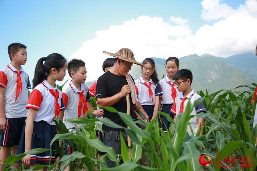 開學第一課:愛惜糧食 感恩勞動【3】