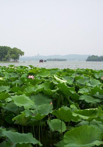 杭州西湖位于哪个省_杭州西湖--浙江频道--人民网