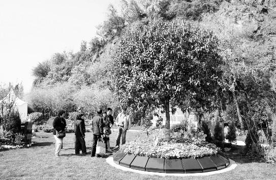 清明日的扫墓大军人潮更汹涌。在杭州半山公墓,传统的墓地区块里,前来扫墓祭奠的人群熙熙攘攘。但记者发现,在半山公墓的另一隅,一块绿树繁茂的墓地区块,却显得有些清冷。这么好的环境为什么来祭扫的人却这么少?   原来这个区块是半山公墓去年推出的新型墓葬区块,长眠在这里的人们,他们选择的墓葬方式是树葬和生态墓。但在杭州,似乎这样的新型墓葬方式并不受人青睐。   新型墓葬,既环保又美观   钱江陵园也在生态墓葬上下足了功夫,虽然是二期工程中才有的项目。但昨天(4月5日)钱江陵园还是专门做了一个示范区,这里分别展